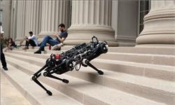 科学家发明<em>猫</em>形搜救机器人 能适应各种复杂地形