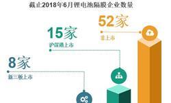 2017年中国锂电池隔膜五大企业业绩对比 创新股份领跑