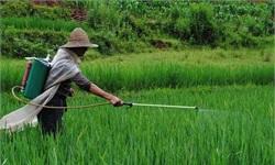 农药中间体行业发展趋势分析 高端市场迎发展机遇