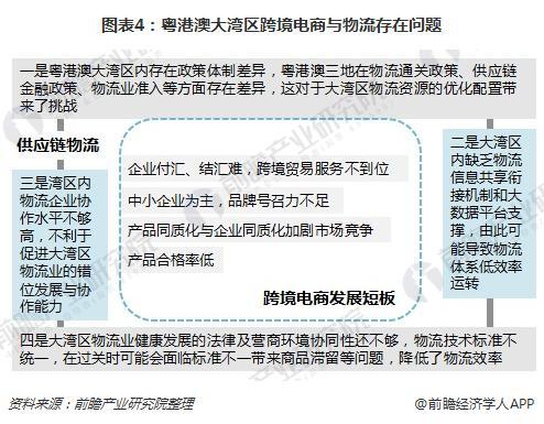 图表4:粤港澳大湾区跨境电商与物流存在问题