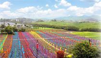 【现代农业】广东25家省级现代农业产业园建设名单发布