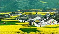 乡村旅游如何开发才是正确途径?