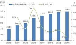 无公害、有机蔬菜需求日益强劲 未来10年中国蔬菜市场保持稳定发展趋势