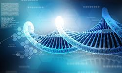 """为了找到""""超人""""的秘密 这家美国科技创企正建立最大的人类极限基因库"""