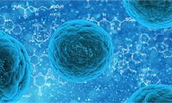 """""""超级细菌""""进化终止!医学人员研发""""氧气杀菌"""" 抗生素或退出舞台"""