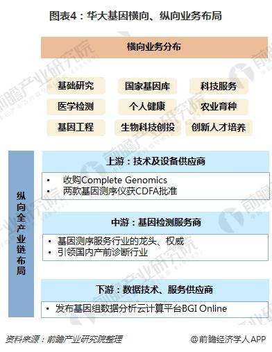 图表4:华大基因横向、纵向业务布局