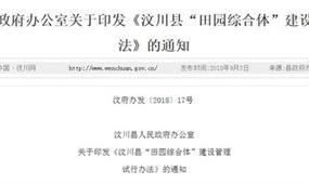 汶川县田园综合体政策