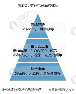 图表2:鲜花电商品牌梯队