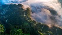 洪雅县发展森林康养产业的探索与实践