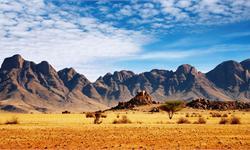 新兴市场动荡波及非洲 非洲各国央行暗示实施紧缩政策