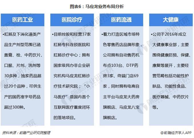 图表6:马应龙业务布局分析