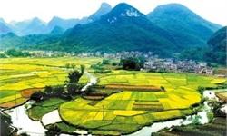 乡村旅游获大众青睐 如何打造小而美的旅游项目?