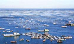 政策与市场双推动 <em>海洋生物</em><em>医药</em>行业发展空间巨大