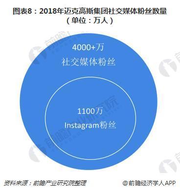 图表8:2018年迈克高斯集团社交媒体粉丝数量(单位:万人)