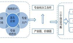 2017年中国<em>农业产业化</em><em>联合体</em>建设现状分析 未来建设空间大