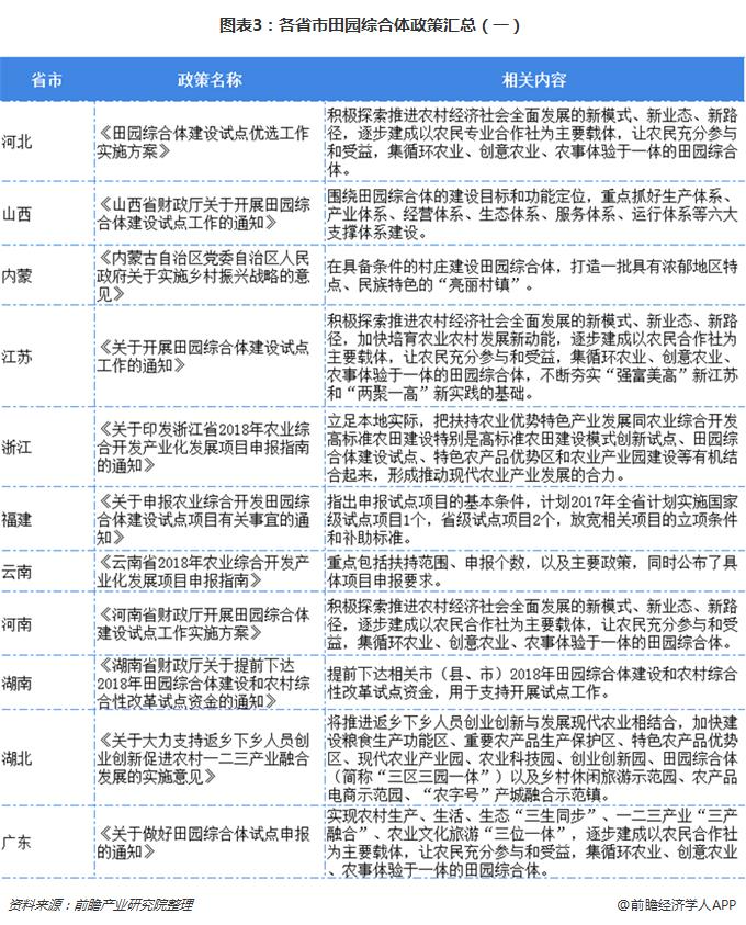 图表3:各省市田园综合体政策汇总(一)