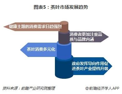 图表5:茶叶市场发展趋势