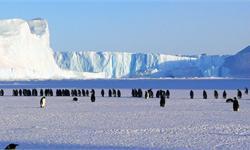 """美澳科学家赴南极洲捕捉大气""""清洁剂"""" 有助于改善全球气候变暖预测"""
