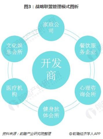 图3:战略管理模式图析