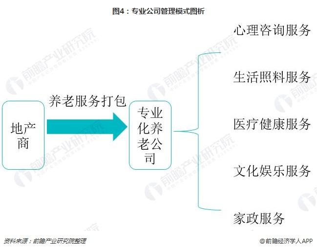 图4:专业公司管理模式图析