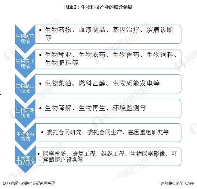 图表2:生物科技产业的细分领域