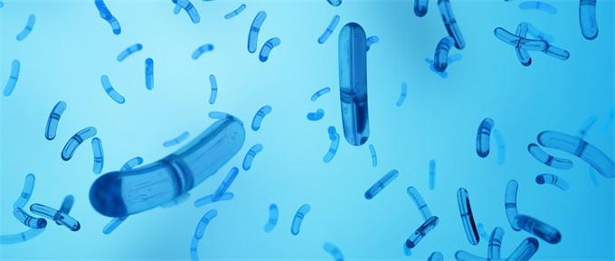 """国际空间站发现超级细菌 科学家担忧或将变异成""""加强版""""新型致病菌"""