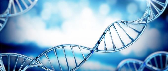 世界首例人体内基因编辑疗法?美医药公司CRISPR临床试验获FDA批准
