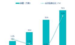 2019年中国<em>新能源</em><em>汽车</em>产业趋势前瞻 合资品牌将发力