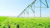 国家农业产业化示范基地分布现状分析