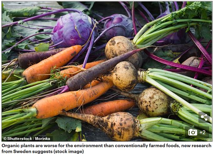 有机食品可能比传统食品对环境的危害更大 碳排放量最高可增加70%