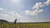 解读最新土地制度改革政策 未来将产生哪些重大影响