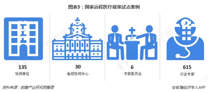 图表5:国家远程医疗政策试点案例