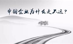 陈春花:中国企业为什么走不远?
