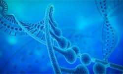 2018年中国生物医药行业发展空间巨大