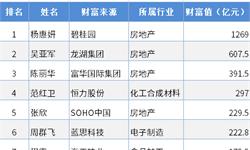 房地产女富豪财富缩水 十张图了解2019年中国房地产市场前景与发展趋势