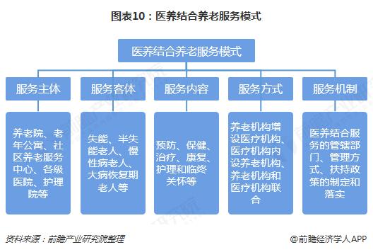 图表10:医养结合养老服务模式
