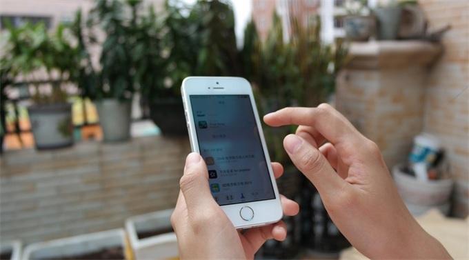 库克给中国用户拜年 思路清奇网友喊话别忘给苹果总部搞搞绿化