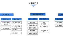 预见2019:《2019年中国大<em>健康</em><em>产业</em>全景图谱》(附<em>产业</em>布局、政策环境、市场规模、发展趋势)