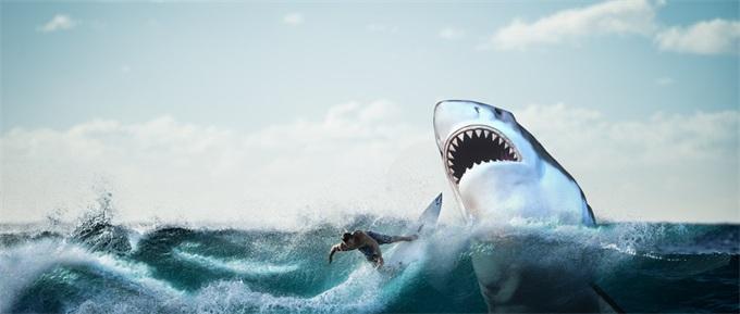 超级自愈能力的秘密即将揭开?科学家首次绘制大白鲨基因组