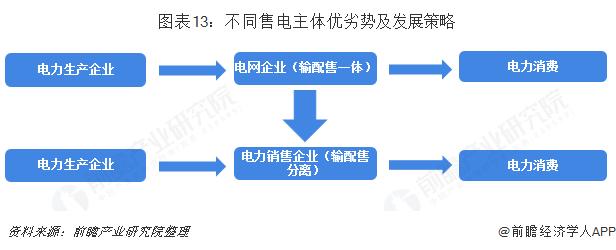 图表13:不同售电主体优劣势及发展策略