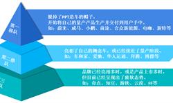 关厂、?#23548;郟?#29305;斯拉想干什么?(下)——竞争加剧,中国新能源汽车市场挑战与机遇并存