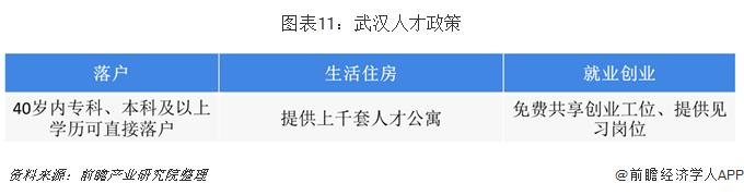 图表11:武汉人才政策