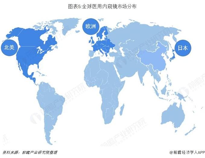 图表5:全球医用内窥镜市场分布