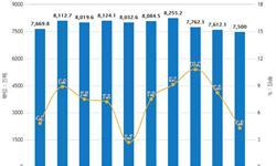 2019年1月中国钢铁行业市场分析:粗钢月度产量达到7500万吨