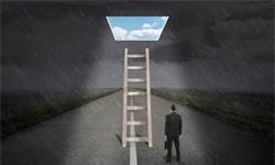 陈春花:高成长企业选择组织架构必须考虑四个因素