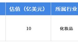 2018年中美<em>独角兽</em><em>差异</em>行业分析——化妆品:中国自主品牌建设还需加强