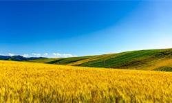 2018年中国<em>农业产业化</em><em>联合体</em>发展空间巨大 利好政策+资金支持推动<em>农业</em>化发展