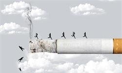 2019年中国烟草行业市场现状及发展趋势分析 电子烟领域成长空间巨大,前景广阔