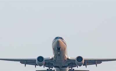 洗白波音?美媒:鸟类撞击737 MAX导致埃航空难