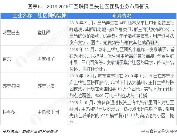 图表6: 2018-2019年互联网巨头社区团购业务布局情况